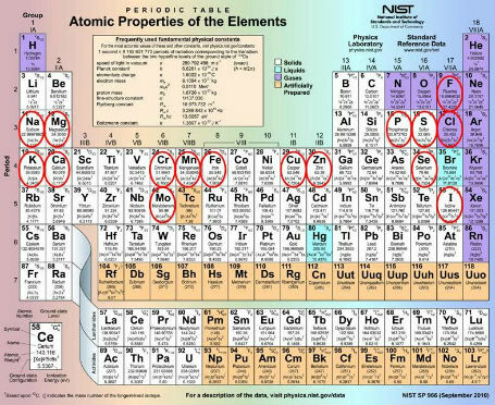 Annotated Periodic Table