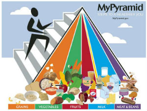 new USDA food pyramid