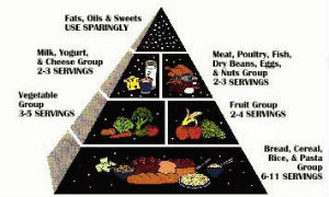 old USDA food pyramid