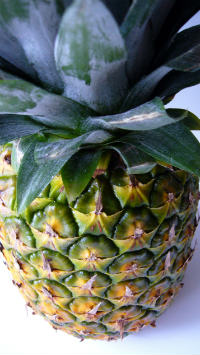 pineapples are routinely irradiated