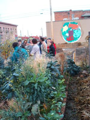Permaculture Overview A Tale Of Two City Lots Pantry