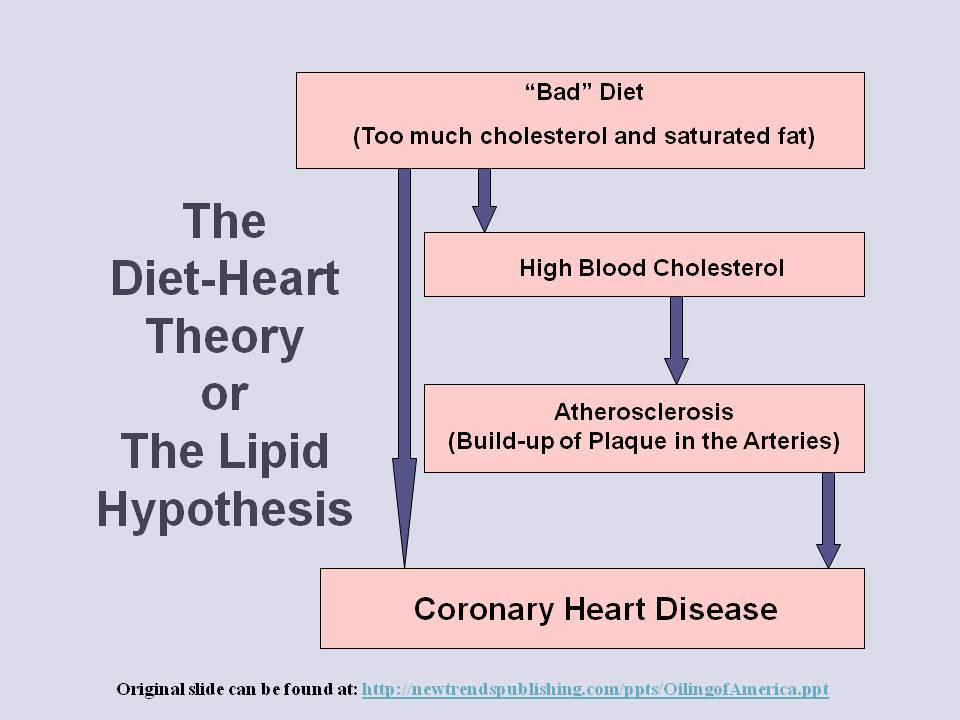 Lipid Hypothesis