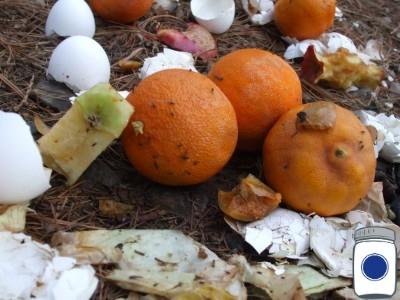 guerrilla composting