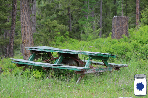 Decaying Picnic Table