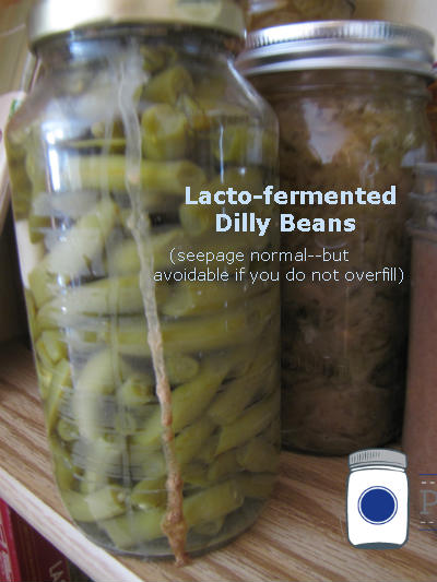Dilly Beans with Seepage