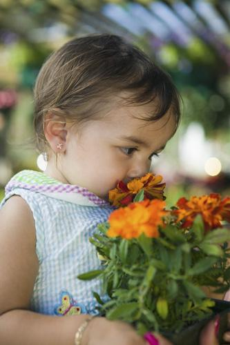 Child in Plant Nursery