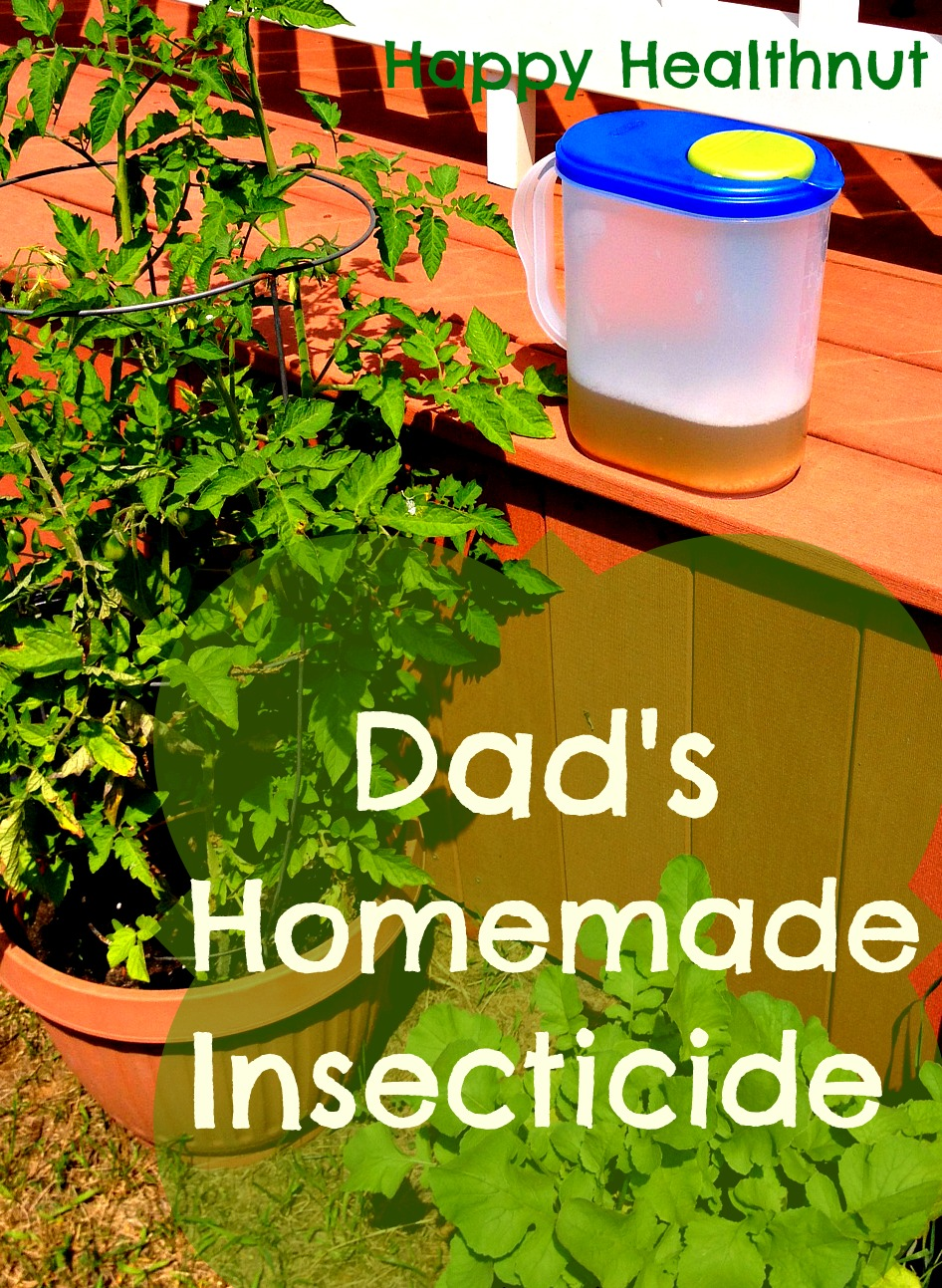 DIY Insecticide