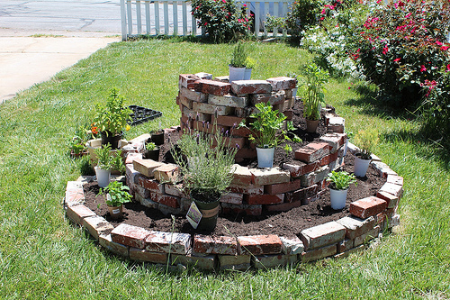 Herb Spiral-maximizes space in zone 1