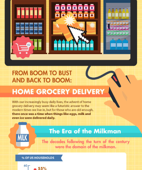 Home Delivery Infograph
