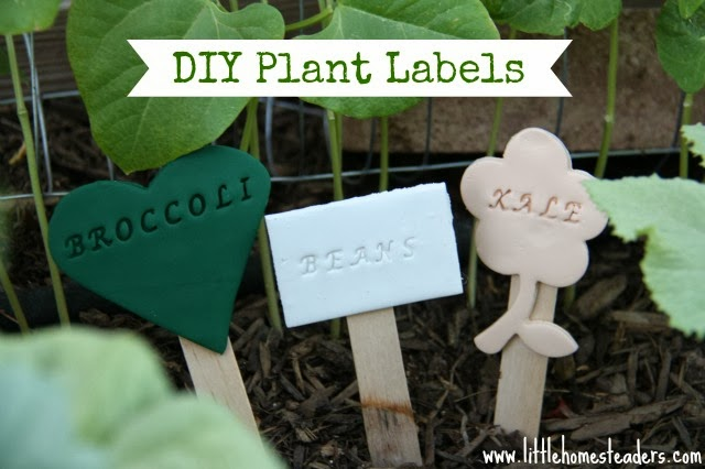 DIY Plant Labels