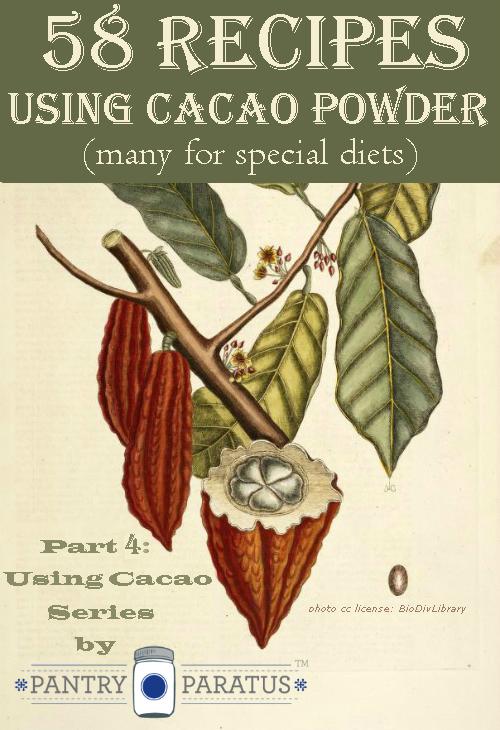 58 Recipes for Cacao Powder