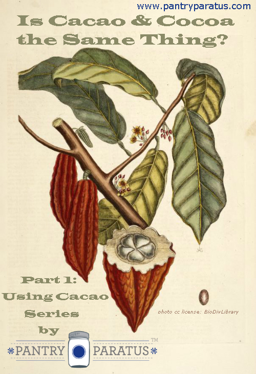 Is Cocoa and Cacao the Same Thing