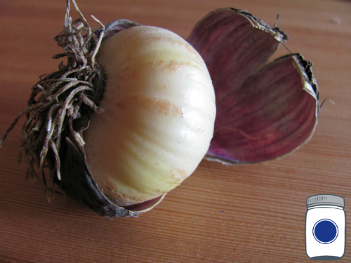 Garlic & Onions are poisonous to pets