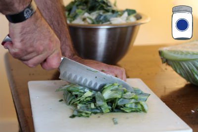 Use Exterior Leafy Green
