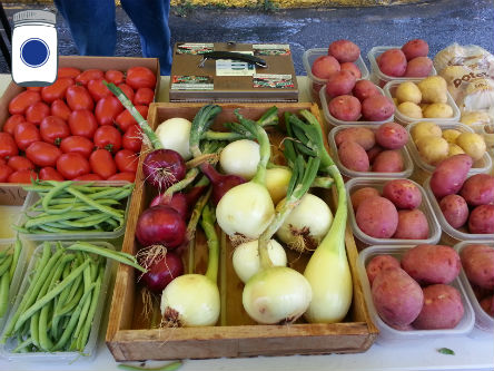 Vegetables at the Farmers Market