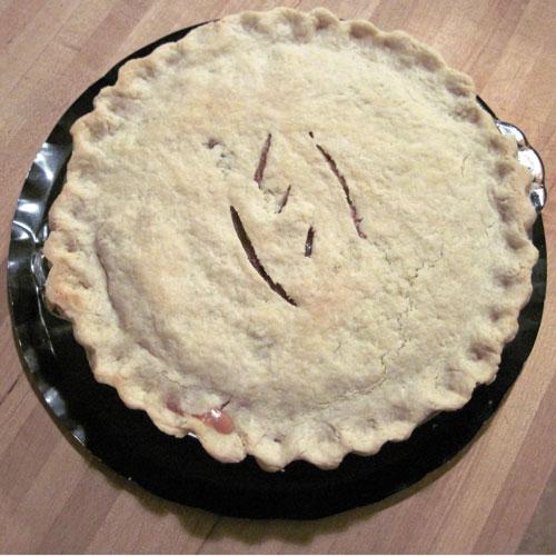 Chicken Pot Pie by Common Sense Homesteading