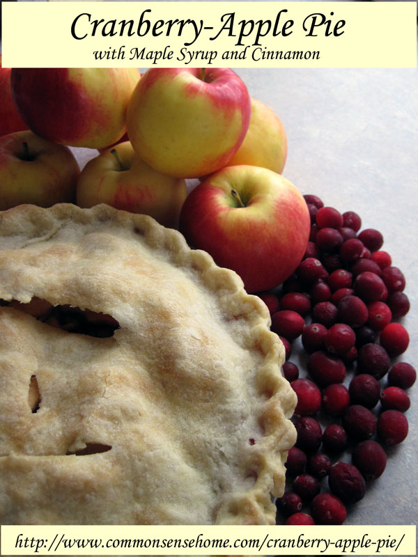 Cranberry Apple Pie by CommonSenseHomesteading