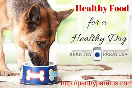 Healthy Food for a Healthy Dog