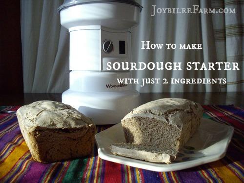 Sourdough Starter Joybilee Farm