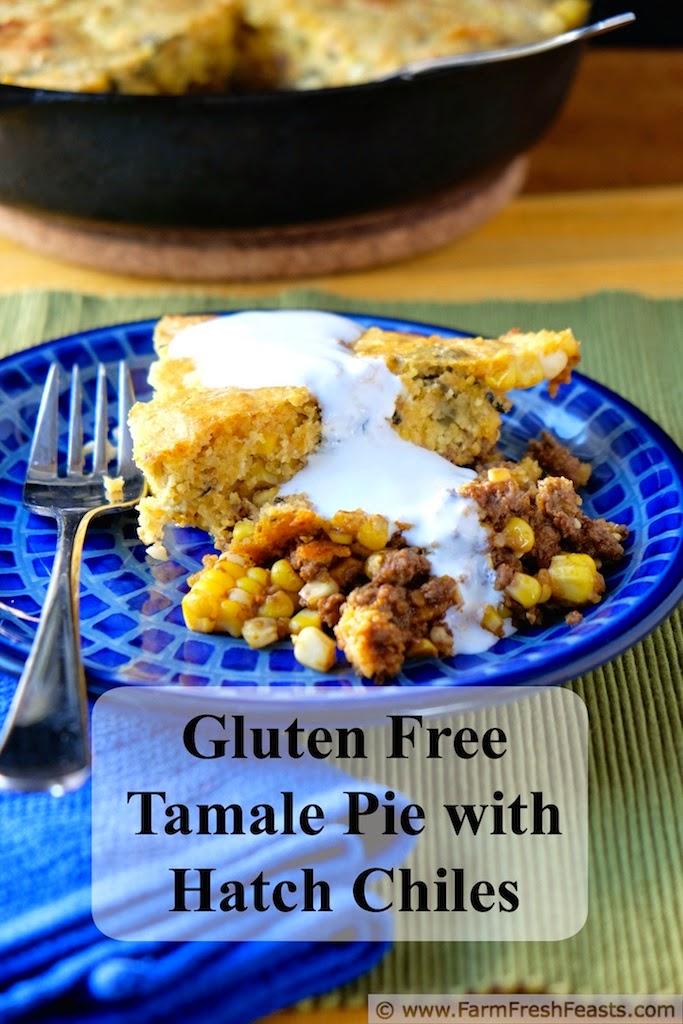 Tamale Pie by FarmFreshFeasts