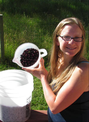 Chaya after Huckleberry Picking