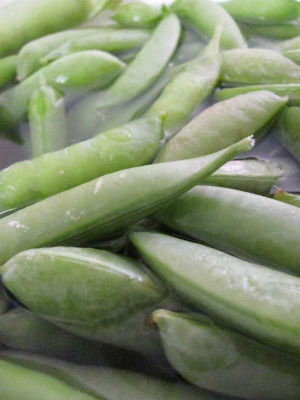 Sugar Snap Peas straight from the garden