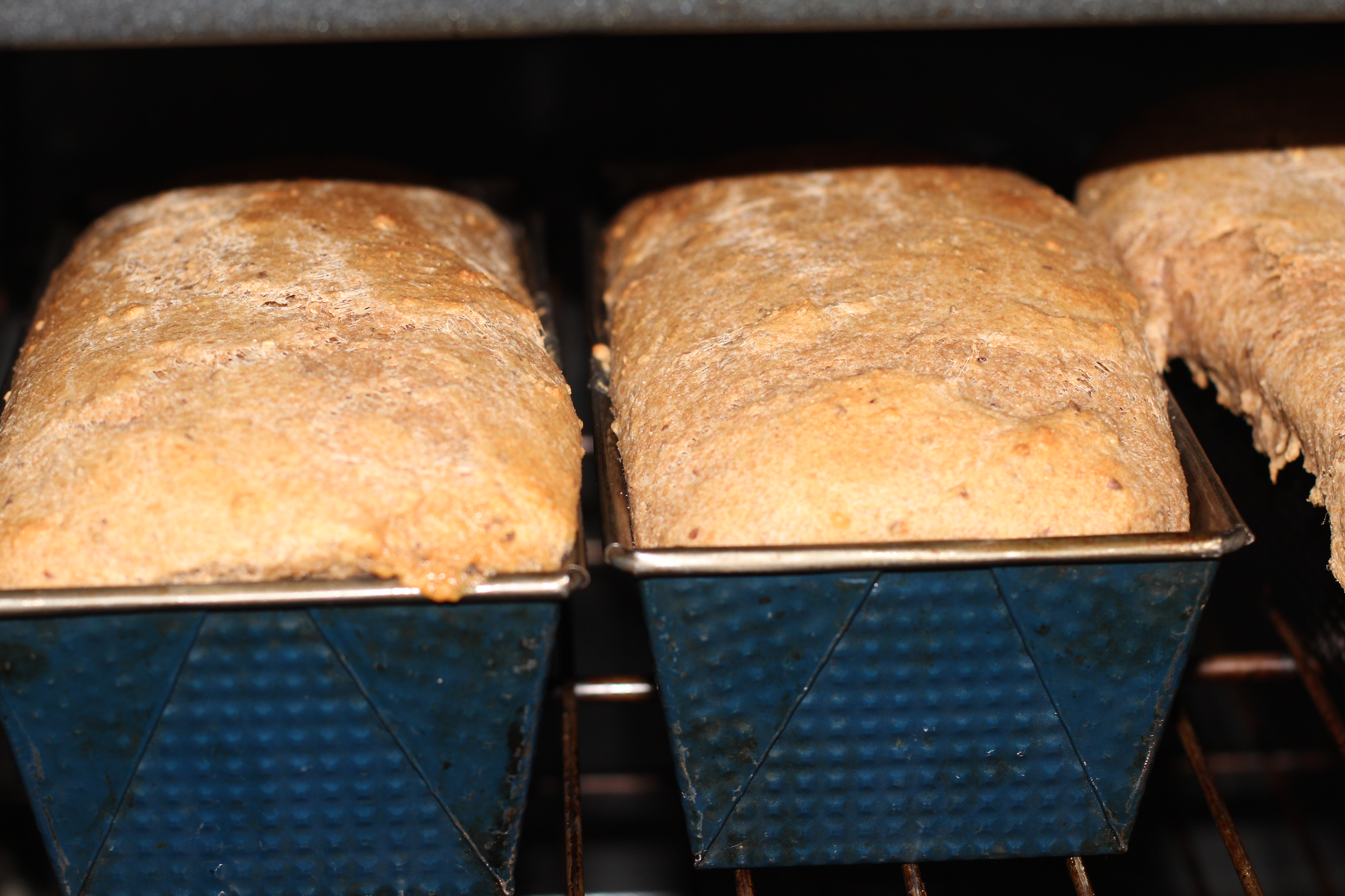 Bread in Oven