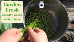 Garden Fresh Chicken Salad