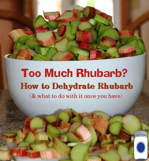 How to Dehydrate Rhubarb