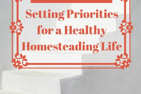 4 Tips to Sanity: Setting Priorities for a Healthy Homesteading Life
