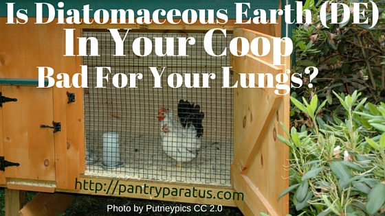 Diatomaceous Earth in Your Coop