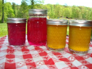 Dandelion and Violet Jelly