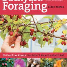 backyard_foraging_highrez.jpg