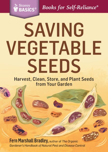 saving-vegetable-seeds