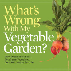whats wrong with my vegetable garden