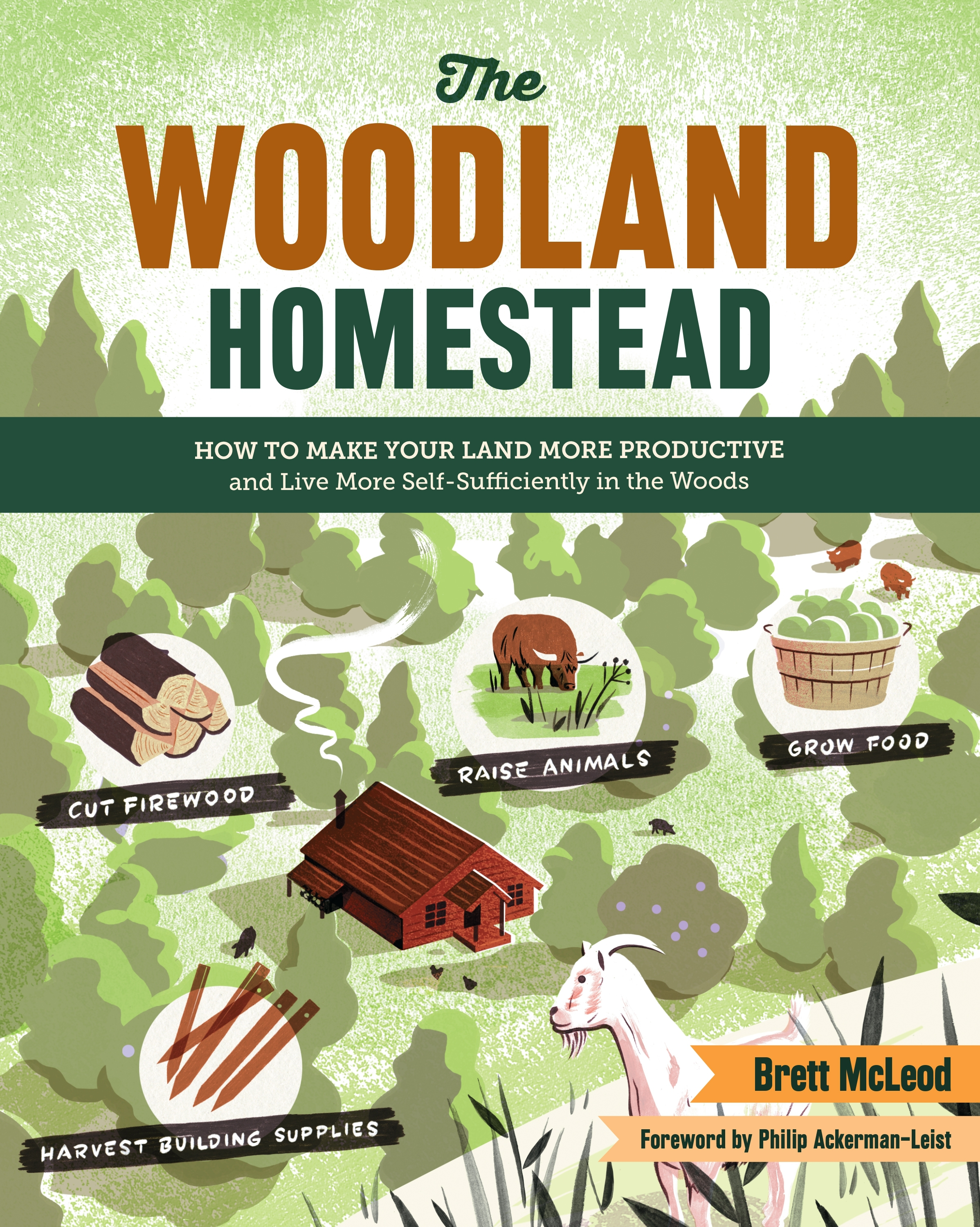 The woodland homestead live self sufficiently in the woods for How to get free land in usa