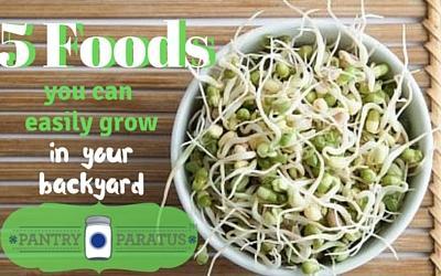 5 Food You Can Easily Grow