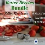 Better Berries Bundle