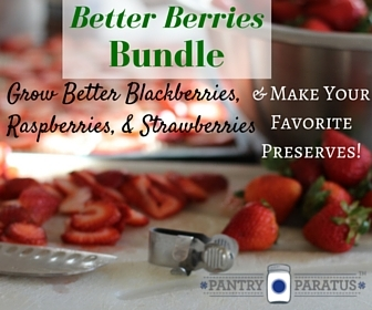 Better Berries Bundle