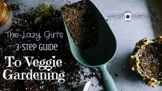 The Lazy Girl's 3 Step Guide to Veggie Gardening