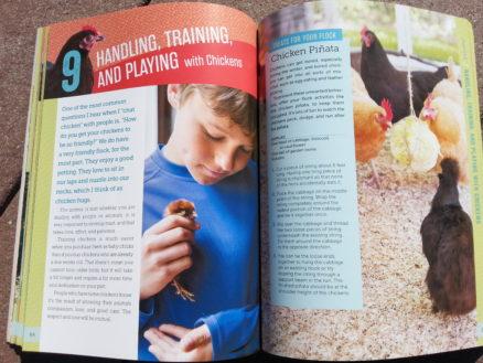 Handling Training Playing