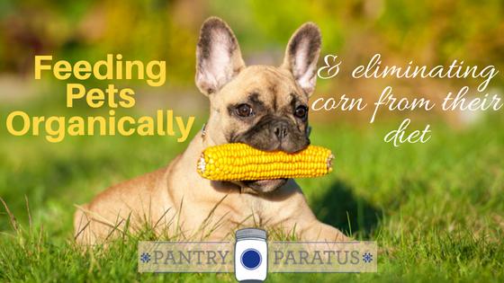 Feeding pets Organically