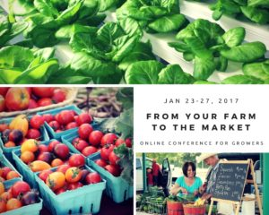 How to sell at a farmer market