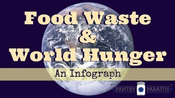 Food Waste Amp World Hunger An Infograph