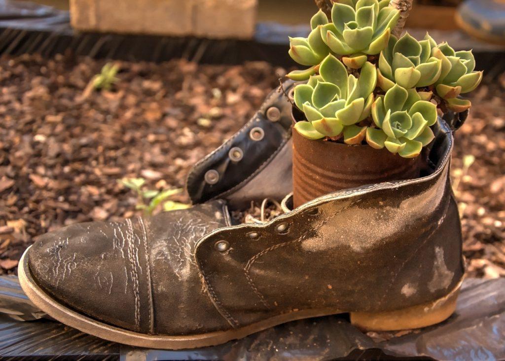 old boot flowerpot