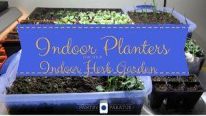 Indoor Planters for Indoor Herb Gardens
