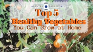 Top 5 Vegetables You Can Grow at Home