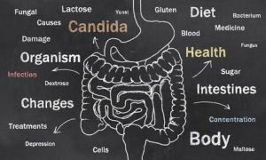 Intestinal health